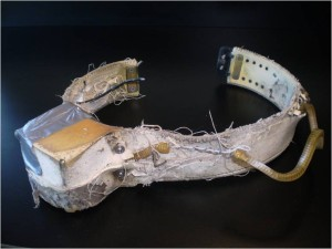 A collar recovered from a bear in the western Hudson bay population.